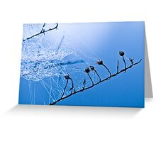 Soothing Soul Greeting Card
