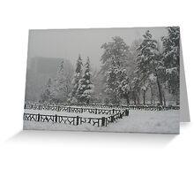 Snow in Tehran Greeting Card