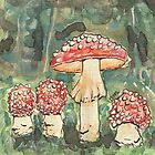 Mushrooms - Fly agaric by Troglodyte