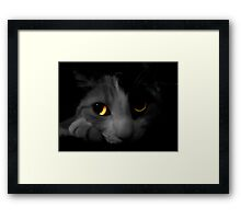 Cats Eyes 2 Framed Print