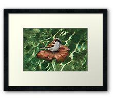 SparrowOnAQuest Framed Print