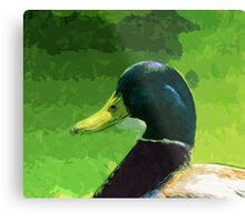 Male Mallard Duck Abstract Impressionism Metal Print