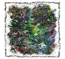 The Atlas Of Dreams - Color Plate 151 Photographic Print