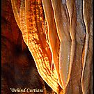 "Behind Curtians   ""Caverns Series"" by Angelica Frances"