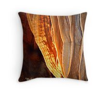 "Behind Curtians   ""Caverns Series"" Throw Pillow"