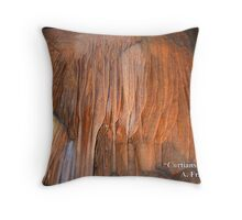 Curtians II Throw Pillow