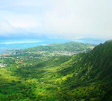 View of Oahu by iceeyes