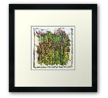 The Atlas Of Dreams - Color Plate 154 Framed Print
