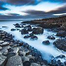 Giant's Causeway, Northern Ireland by Alessio Michelini
