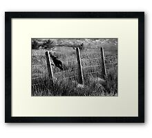 Black Plastic Flag Framed Print