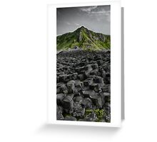 Causeway in Green Greeting Card