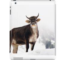 I Don't Like Snow iPad Case/Skin