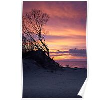 Lovers on the coast at sunset Poster
