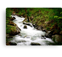 Running stream in the alps.  Canvas Print