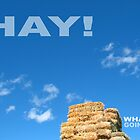 Hay! What's Going On - Card by T-Shirt 2-U