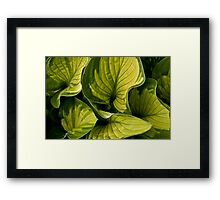 Twisted Greenery Framed Print