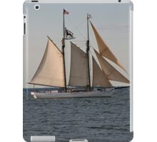 Wintry Sail iPad Case/Skin
