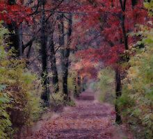 Turning Over a New Leaf by Shelley Neff