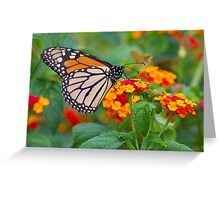 Royal Butterfly Greeting Card