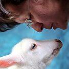 Mommy loves Steward by Chris Coetzee