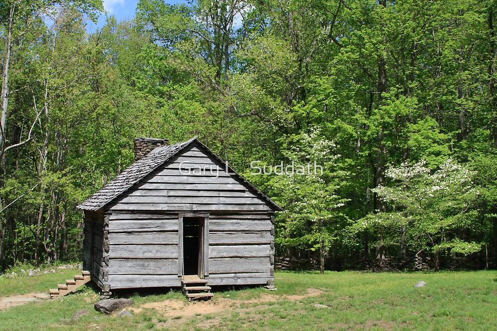 Alex Cole Cabin by Gary L   Suddath