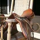 Rocking Horse by Outdoors2