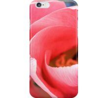 Monet's Garden II iPhone Case/Skin