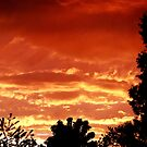 Fire In The Sky by carolssecrets
