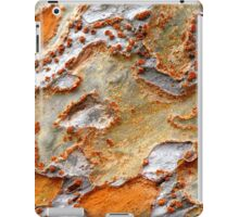 Dots and Spots iPad Case/Skin