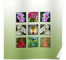 Mama's Garden Poster
