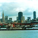 SF Skyline by Tom Gomez