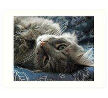 Jimmy lounging Art Print