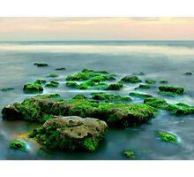 gems of the sea Photographic Print