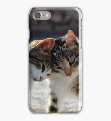 Loving Kittens iPhone Case/Skin