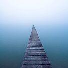 Path to Oblivion by David Haworth