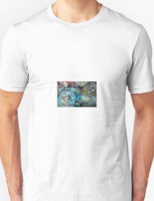 Kyoto Dry Landscape T-Shirt