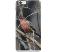 Stand Tall and Be Proud! iPhone Case/Skin