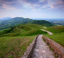 The Malvern Hills by Angie Latham