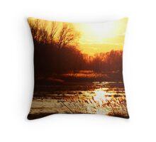 The Wetlands Throw Pillow