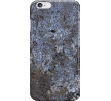 The Beauty in Frost. iPhone Case/Skin