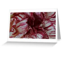 Twisted Sister Close Up. Greeting Card