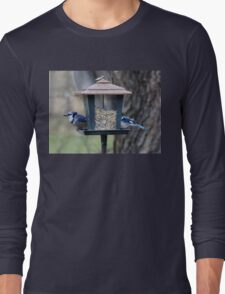 Seeing Double. Long Sleeve T-Shirt