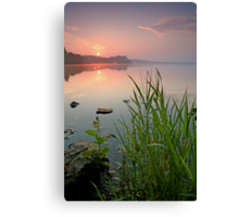 Reeds in the Calm Canvas Print