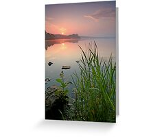 Reeds in the Calm Greeting Card
