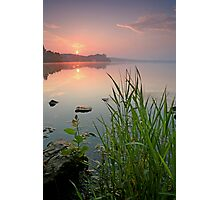 Reeds in the Calm Photographic Print
