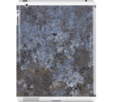 The Beauty in Frost. iPad Case/Skin