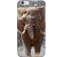 African Elephant Photography iPhone Case/Skin