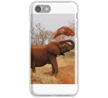 African Elephant Cleaning iPhone Case/Skin