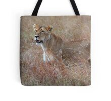 Lion in the Grass, Maasai Mara, Kenya  Tote Bag