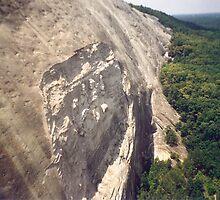 Georgia's Stone Mountain by Sheila Simpson